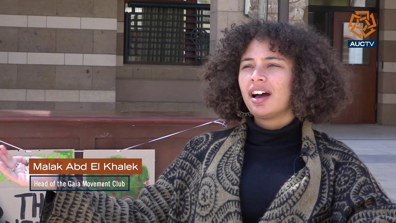 Sustainable AUC